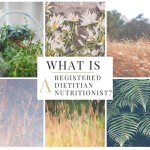 What is a Registered Dietitian Nutritionist?