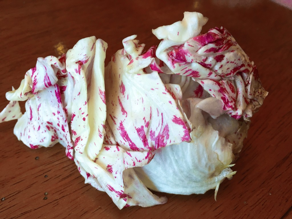 Castelfranco Radicchio White and Magenta